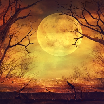 spooky yellow full moon behind tree branches