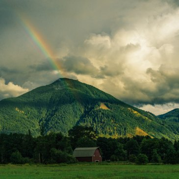 rainbow over a green hill on a cloudy day