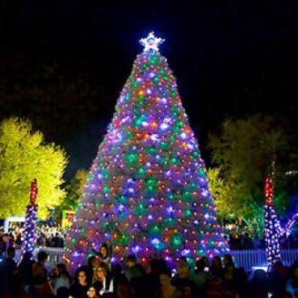 cs-tree-lighting-tumbleweed-tree