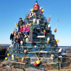 lobster pot tree